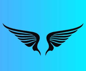 Wings Design 1