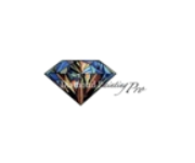 Diamond Painting Pro Coupons