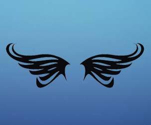 Cool Butterfly Wings 2
