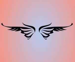 Cool Butterfly Wings