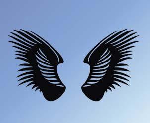 Detailed Wings