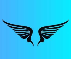 Wings Design 1