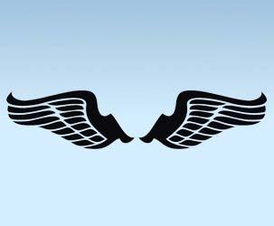 Wings Design 2